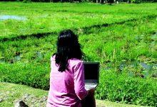 Digital Nomad & Independent Worker