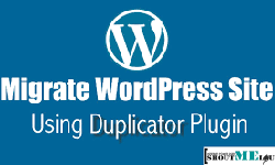 Learn to migrate a WordPress website